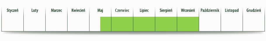 dostepnosc_brzoskwinia