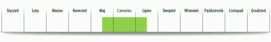 dostepnosc_czeresnia