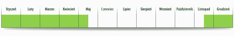 dostepnosc_ogorek