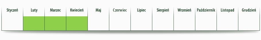 dostepnosc_szparagi