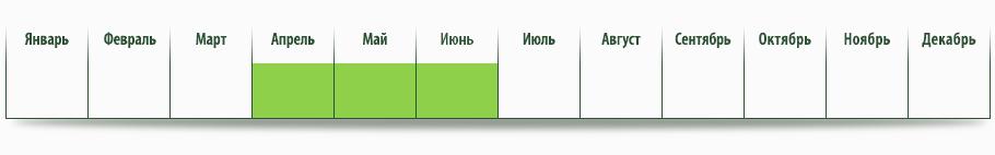 dostepnosc_ziemniaki
